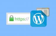 wordpress-ssl-190x122 آموزش حذف category از آدرس دسته بندی وردپرس