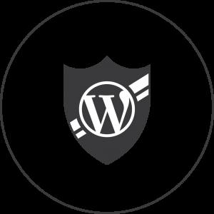 wordpress-security-icon-black-300x300 آموزش وردپرس استفاده از چند عدد در بالا بردن امنیت سایت وردپرسی