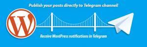 آموزش تصویری و کاربردی اتصال تلگرام به وب سایت وردپرسی