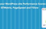 افزونه WP Performance Score Booster آموزش افزایش سرعت وردپرس