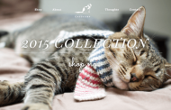 Catscarf-190x122 فیلدهای سفارشی پیشرفته با افزونه حرفه ای مدیریت زمینه های دلخواه