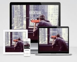 قالب وردپرس شرکتی Moesia